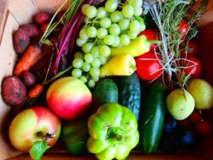Bedýmka s ovocem a zeleninou